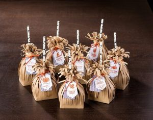 Witches Broom treat bags
